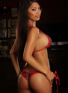 Busty Babe Sherri Teases In A Plaid String Bikini - Picture 9